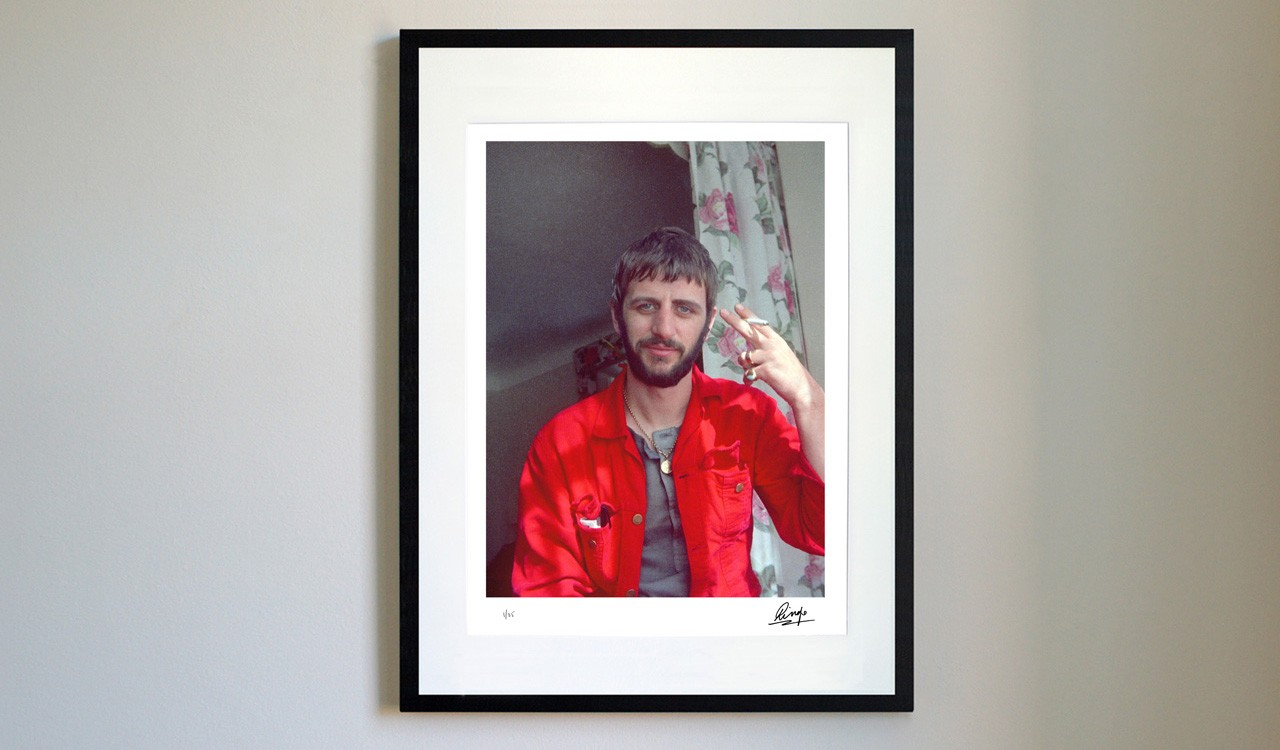 8. Ringo image 1