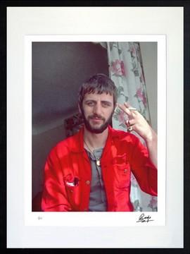 8. Ringo